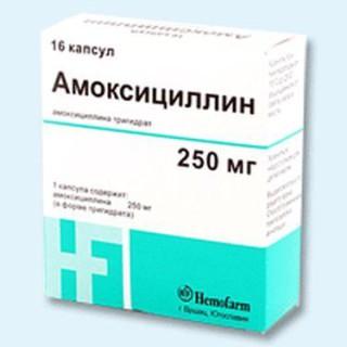 амоксициллин от бактерий