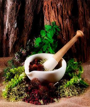 Вековые рецепты лечения гайморита